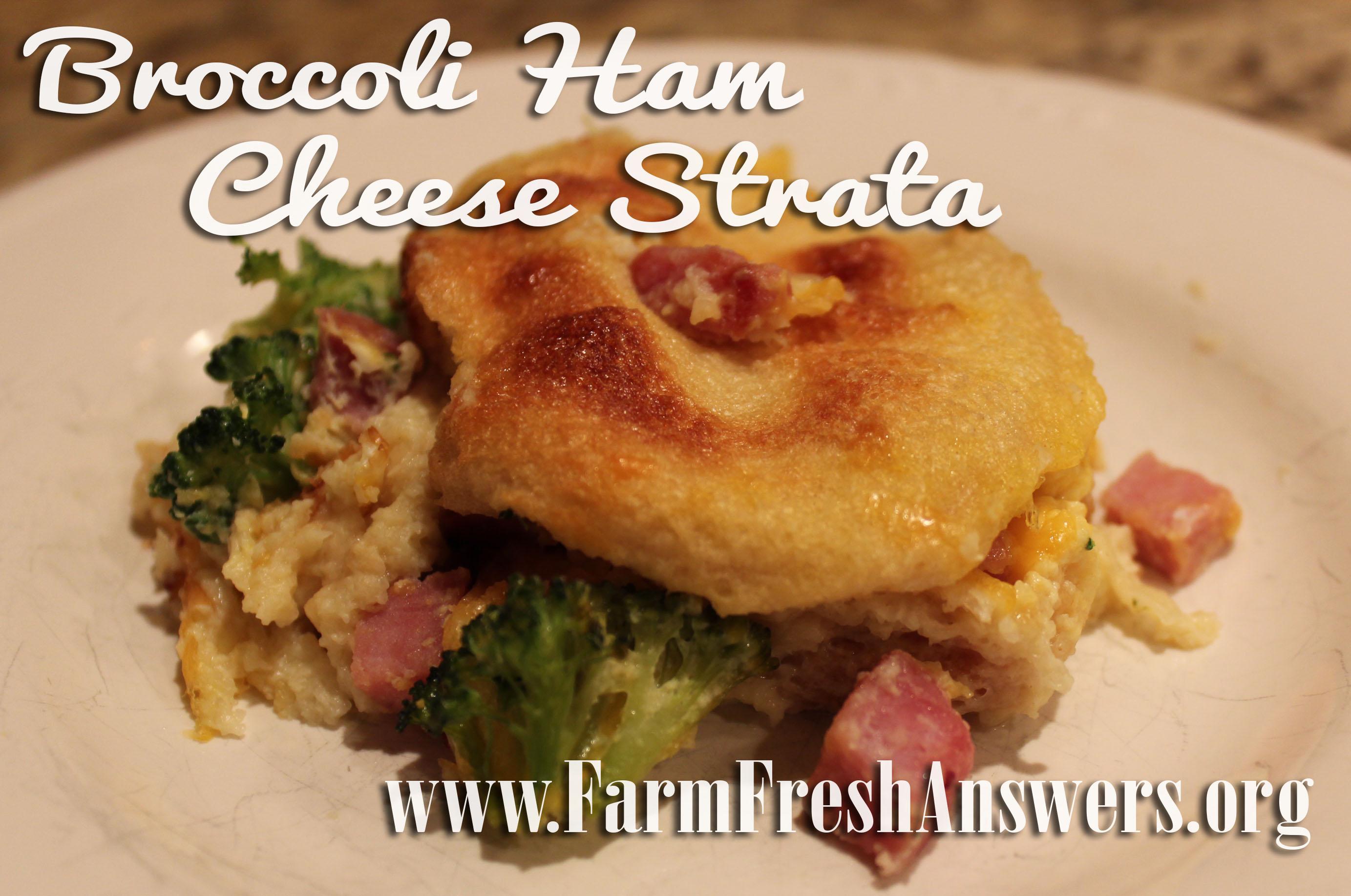 Broccoli Ham Cheese Strada