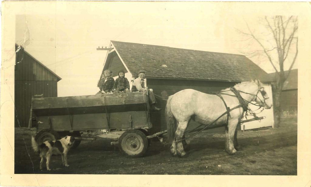 Olson, horse cart, circa 1950