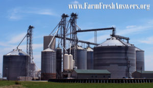 Grain elevators aggregate and ship corn, soybeans and other grains.